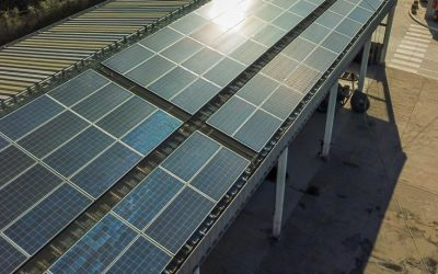 Lee este reportaje de terralink sobre la energía renovable de Texinco
